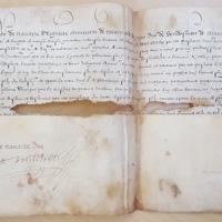 Survivance d'office accordée à Adhémar Mosnier (Périgueux, 27 juillet 1576) - AD Dordogne, 2 E 1853 (54) - photo 1.jpg