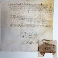Lettres patentes de la reine de Navarre (Vendôme, 16 mars 1565), Ad 64, E 586, n°1 (photo 1).jpg